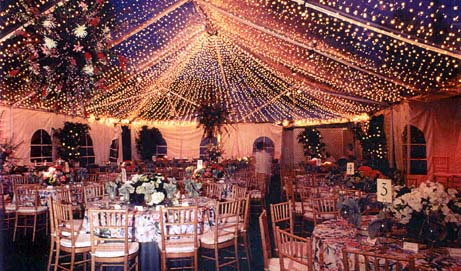 See Through Ceiling Tent Syracuse Ny